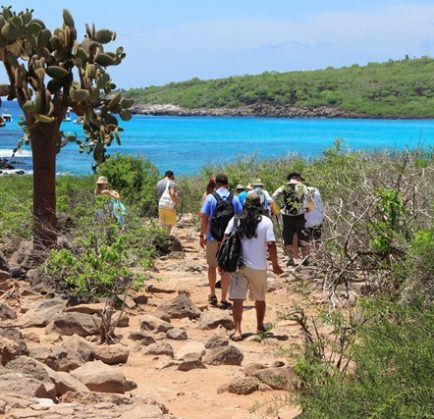 Requirements to Visit Galapagos (Updated to May 2021)